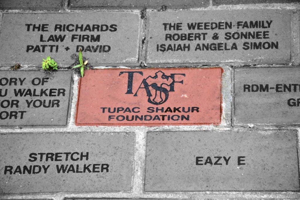 TASF brick